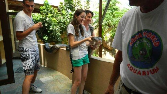 Aquaworld Aquarium & Reptile Rescue Centre: ooo
