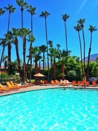 Caliente Tropics Resort: Nice quiet pool.