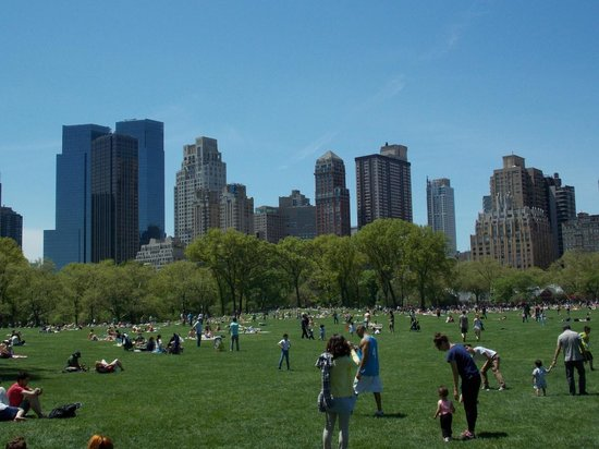 Central Park: Sheep meadow