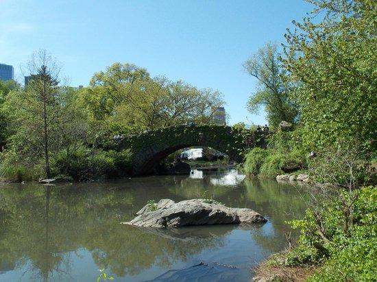 Central Park: Puente sobre lago