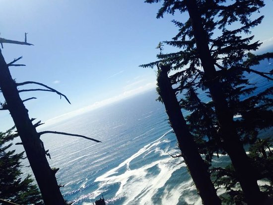 Tillamook Head Traverse Hike: the views are worth the hike!
