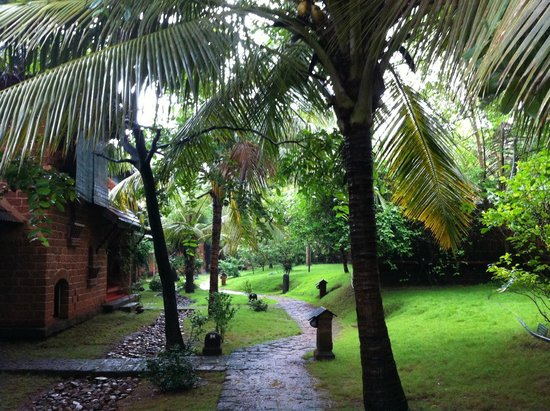 SwaSwara: Home's way trough tropical  trees and  wonderful garden.