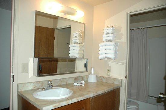 Budget Motel: Sink with Mirror
