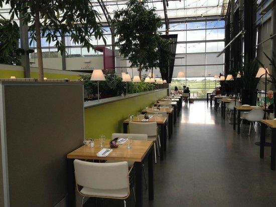 Glasshouse Bistro and Cafe: Huge dining room