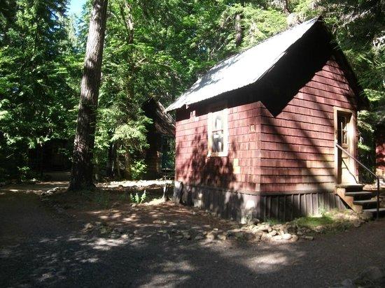 Breitenbush Hot Springs: cabins