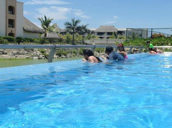 Hard Rock Hotel & Casino Punta Cana: The Bongo Pool