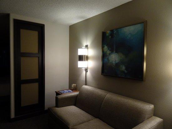 Hyatt Place Orlando/Convention Center: Sofa
