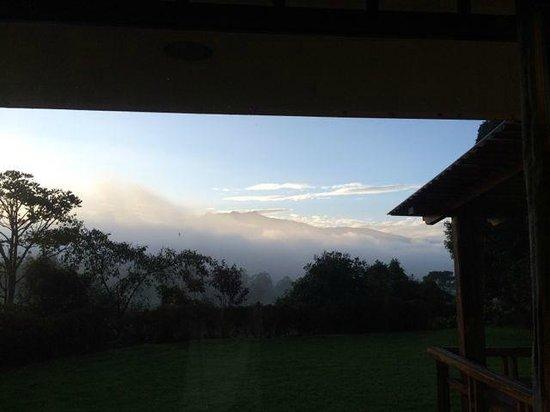 Hacienda La Alegria: Early Morning View from Room