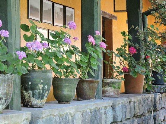 Hacienda La Alegria: Near the guest rooms