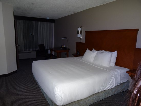 Hyatt Place Orlando/Convention Center: Room