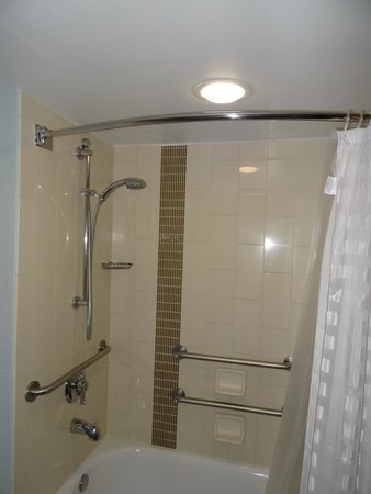 Hyatt Place Orlando/Convention Center: Shower