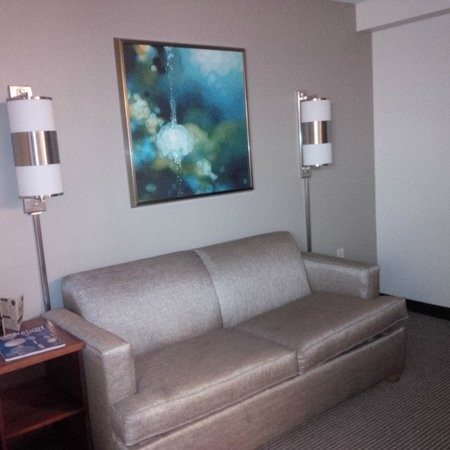 Hyatt Place Orlando/Convention Center : Sofa