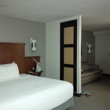 Hyatt Place Orlando/Convention Center: King Size bed