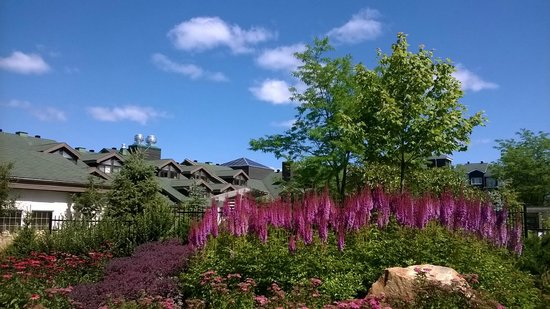 Manoir Saint-Sauveur: Garden near Pool Area