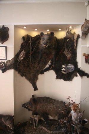 Pierogarnia U Dzika: Indoor boars