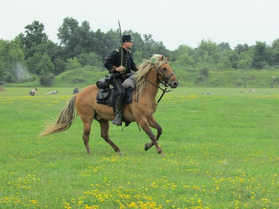 Genesee Country Village & Museum: Shot during the Cavalry Battle