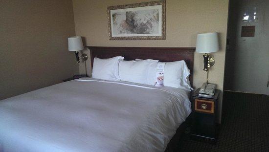 Radisson Hotel Phoenix Airport: Nice King Bed