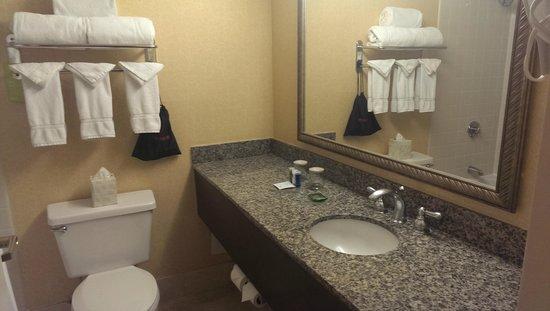 Radisson Hotel Phoenix Airport: Nice Bathroom