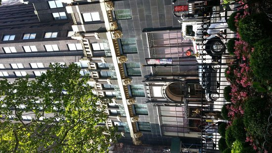 The Bryant Park Hotel: l'hotel