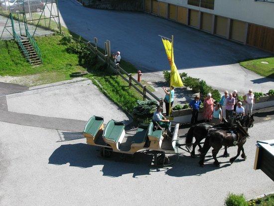 Hotel Sonnschein: Pony & trap.
