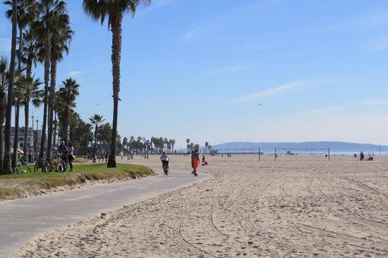 Venice Beach: Venice