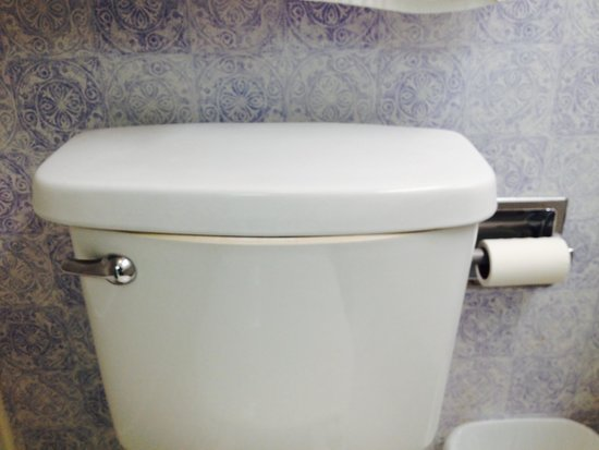 Wyndham SeaWatch Plantation: Toilet lid (front view)