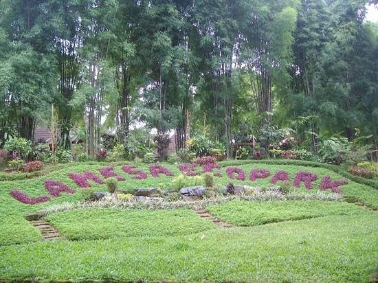 Quezon City, Filipinas: La Mesa Ecopark Garden