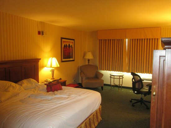 Hilton Northbrook: View of Room 304