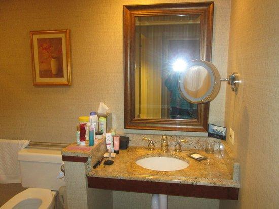 Hilton Northbrook: Bathroom Room 304