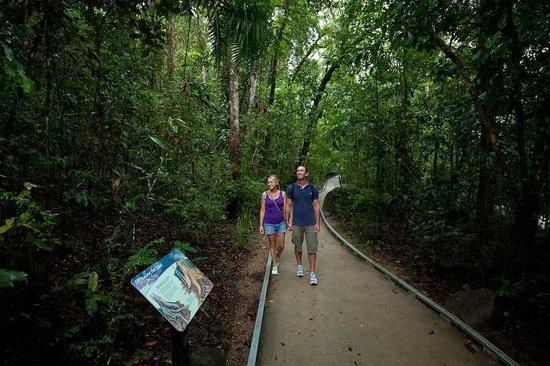 Bay Villas Resort: Daintree Forest