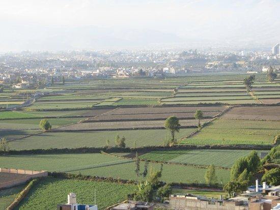 Sachaca: Vista
