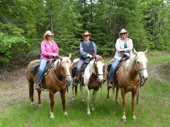 Bull Hill Guest Ranch: Lilly, Larry + Harley our lovely horses