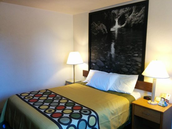 Super 8 Salem: Modern Style Bedding