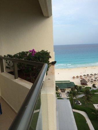 Iberostar Cancun: Голубь, который поселился на балконе. Выгнать жалко, но достал гадить.