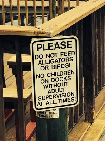 Phillippi Creek Village Restaurant & Oyster Bar: Watch the kids!