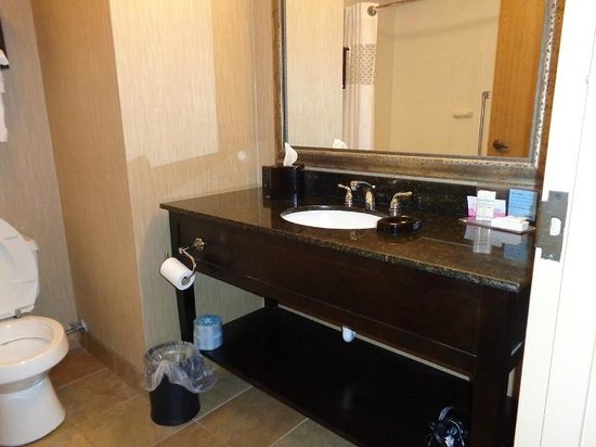 Hampton Inn Lagrange near Callaway Gardens: bathroom