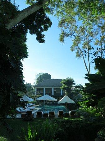 COMO Uma Ubud: View of the pool and bar area