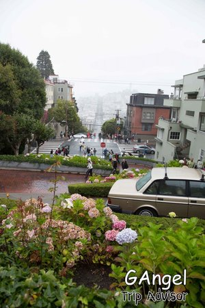 Lombard Street: Enter the tourists on the road