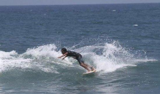 Bali Wau Surf