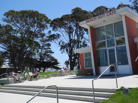 Crissy Field: the tall trees give much shade