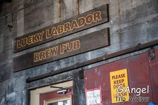 Lucky Labrador Brew Pub: Outside