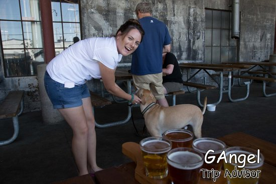 Lucky Labrador Brew Pub: Petra loves dogs