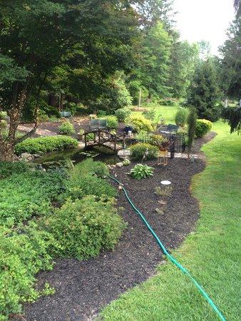 The Frogtown Inn: The garden.