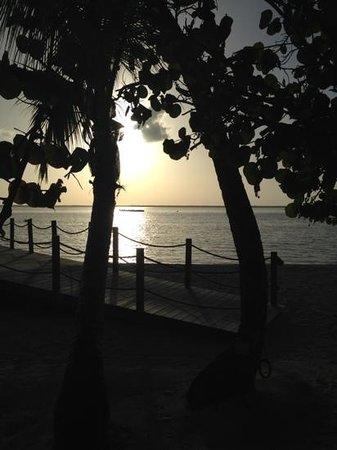 Tiamo Resort: sunsets are amazing here