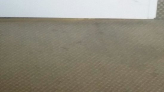 Staybridge Suites Toledo / Maumee: There clean carpet?