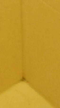 Staybridge Suites Toledo / Maumee: Mold anyone clean tub?
