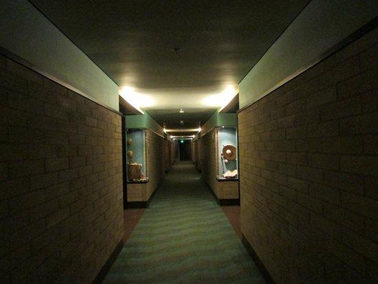 Diez Hotel Categoria Colombia: corredor con decoracion tematica por piso