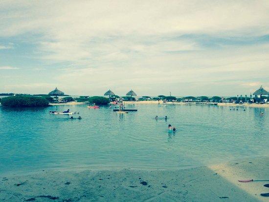 Hawks Cay Resort : Salt water lagoon