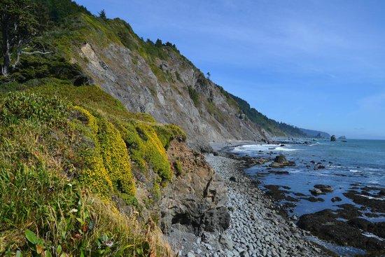 Redwood National Park: pacific ocean