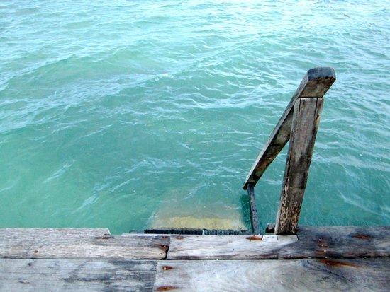 Xanadu Island Resort: Swimming area off dock